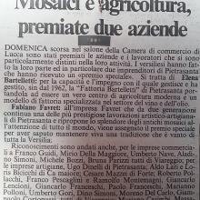 Rassegna stampa premiazione Favret Fabiano da parte della Camera di Commercio di Lucca