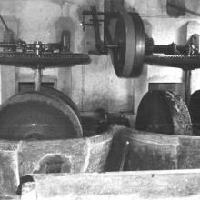 1952 - Molazze