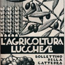 Bollettino della Cattedra Ambulante di Agricoltura - anno 1935