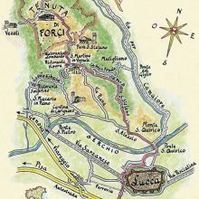 Cartina disegnata dalla Diamantina Scola-Camerini
