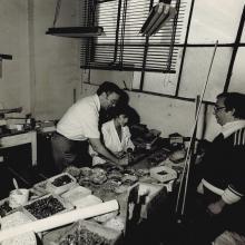 Addetti ai lavori - 1986
