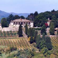 Veduta aerea della villa e della fattoria